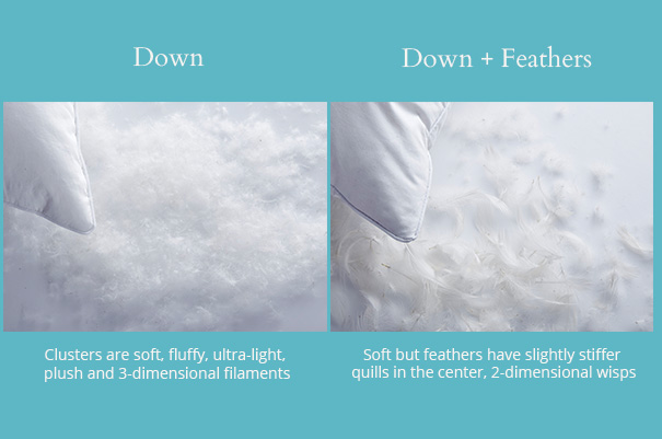 The differences in down and feather pillows