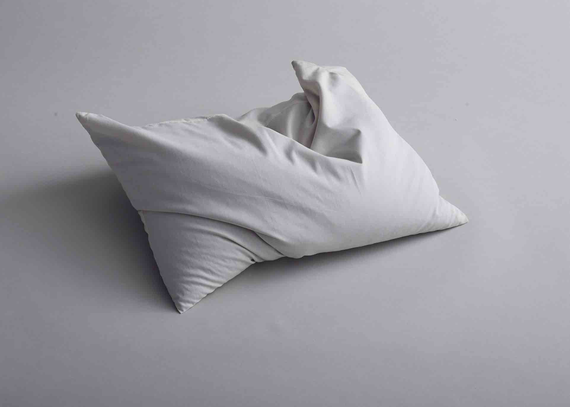 The Ara Buckwheat Pillow