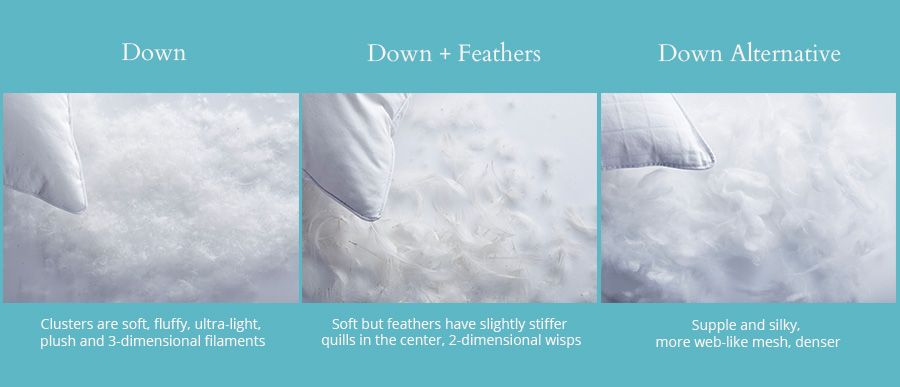 Down vs feather vs. down alternative